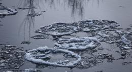 В преддверии паводков Роспотребнадзор усиливает контроль за санитарной обстановкой