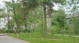 В рамках международной акции «Сад памяти» в Псковской области высажено более 650 деревьев