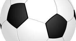 Позиции в спортивном рейтинге регионов России Псковская область вновь улучшила