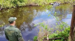 Под Псковом обнаружено тело без вести пропавшей трехлетней девочки