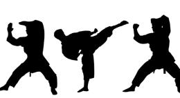 Чемпионат и первенство Псковской области по всестилевому каратэ прошелв Пскове
