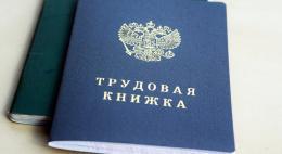 Пенсионный фонд оцифровал все трудовые книжки россиян, опередив принятие законаМинтруда