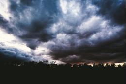 В Псковской области ожидаются сильные ливни – Гидрометцентр
