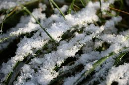 Синоптики предупредили  о снеге в августе в нескольких регионах