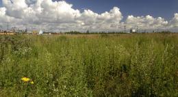 Землевладелец в Псковской области оштрафован на 30 тысяч рублей