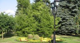 Городской парк Великих Лук ждет реконструкция