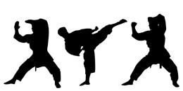 В Гдовском районе проши учебно-тренировочные сборы по кикбоксингу и всестилевому каратэ