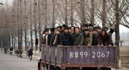 В Приморье усилили меры по высылке нелегалов из Северной Кореи