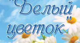 В Великих Луках пройдет благотворительная акция «Белый цветок» в рамках празднования дня города