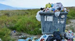 Мониторинг выставленных счетов за вывоз мусора проведутв Пскове