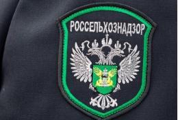 В Псковской области увеличился экспорт животноводческой продукции