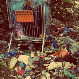 Жители Псковской области больше всего жалуются на несанкционированные свалки