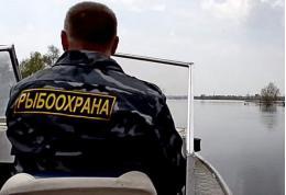 25 нарушений выявила псковская рыбоохрана за прошедшую неделю