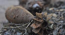 В Островском районе обезврежены две мины времен Великой Отечественной войны