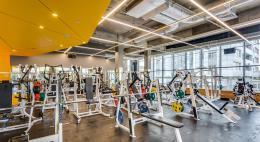 В фитнес-клубы сможет вернуться только половина клиентов