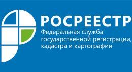 Олеся Ребеко назначена руководителем Управления Росреестра по Псковской области