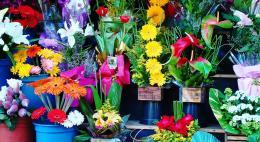 Усилить контроль за ценами на цветы в праздники предложилив Госдуме