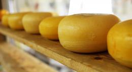 В Псковской области были задержаны почти три тонны итальянского сыра