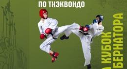 Всероссийский турнир по тхэквондо пройдет в Пскове