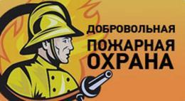 113 подразделений добровольной пожарной охраны созданона территории Псковской области