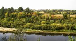 В Псковской области начался прием заявок на участие в конкурсе «Лучшее поселение Псковской области»