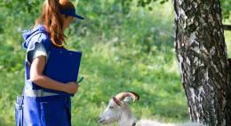 Сельскохозяйственная микроперепись ждет псковичей в 2021 году