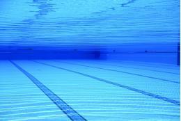 В ближайшие 5 лет в Пскове может появиться 50-метровый бассейн