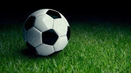 На острове Дятлинка в Великих Луках завершается возведение футбольного поля