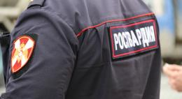 В Острове экипажем группы задержания вневедомственной охраны задержан мужчина, подозреваемый в краже