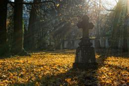 """""""Думаю, людям можно не беспокоиться, к Пасхе мусор с кладбищ будет вывезен"""", - Александр Братчиков"""
