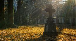 В Дно проводят борьбу с нелегальными кладбищами