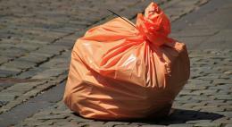 Швеция может начать покупать российский мусор