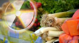 Обработку продуктов питания ионизирующим излучением могут начать в 2020 году