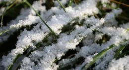 В Гидрометцентре предупредили об аномальной зиме в России