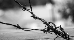 Трудовое законодательство в отношении осужденныхнеоднократно нарушалось всередкинской колонии