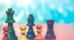 Международный шахматный фестиваль «Псков 2019» собрал около 250 спортсменов