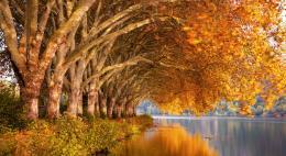 Гидрометцентр пообещал теплый октябрь