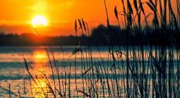 24 пляжа Псковской области открыты для отдыха