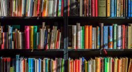 Псковские городские библиотеки рассказали, как обслуживают сейчас читателей