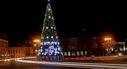 Новогодняя елка в Пскове будет установлена и украшена 7 декабря