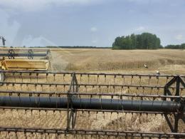 В Псковской области началась уборка зерновых