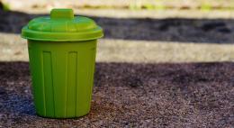 Псковская область получит федеральную субсидию на закупку контейнеров для раздельного сбора мусора