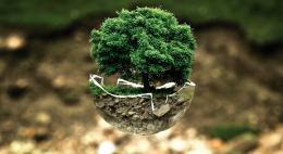 Экологические акции пройдут в Псковской области в рамках Всемирного дня окружающей среды