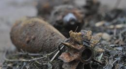 В Псковской области нашли мины времён ВОВ