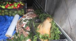 В Псковской области Россельхознадзор вернул в Республику Беларусь два центнера мяса